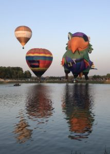 Pirate parrot hot air balloon