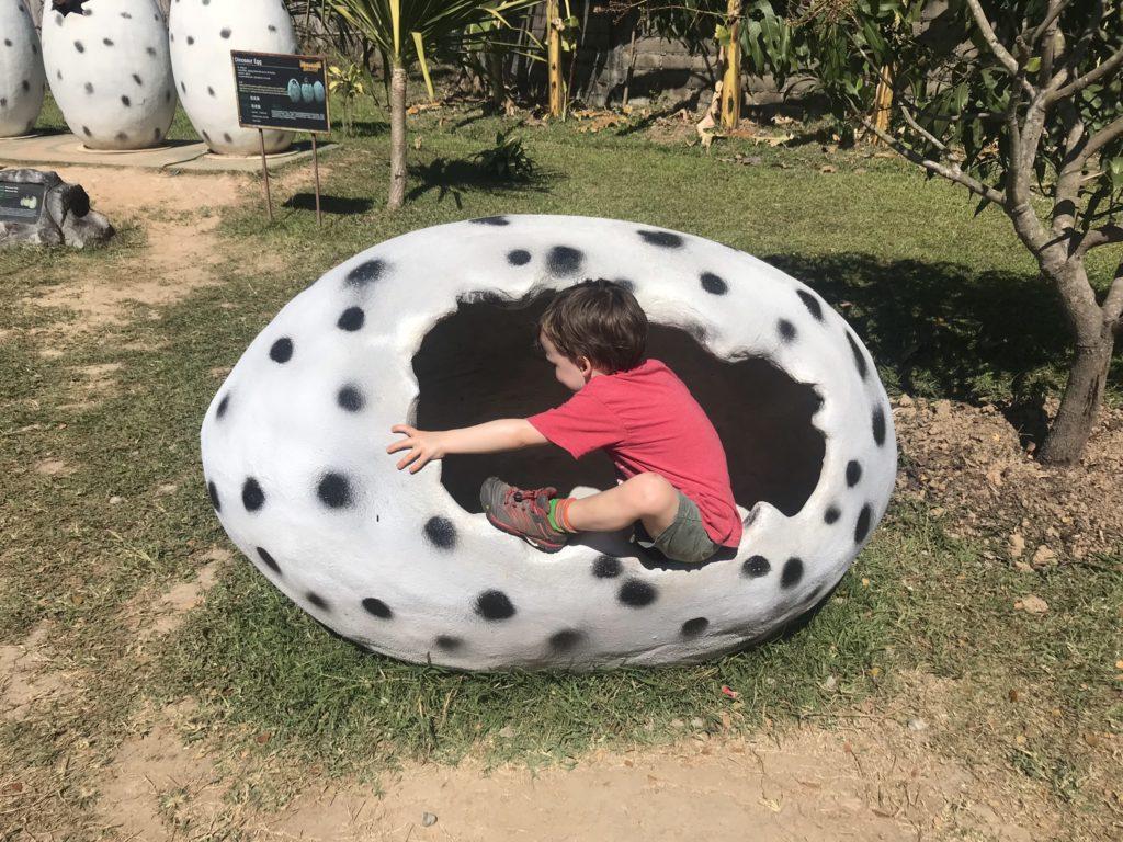 Inside a Dinosaur egg!