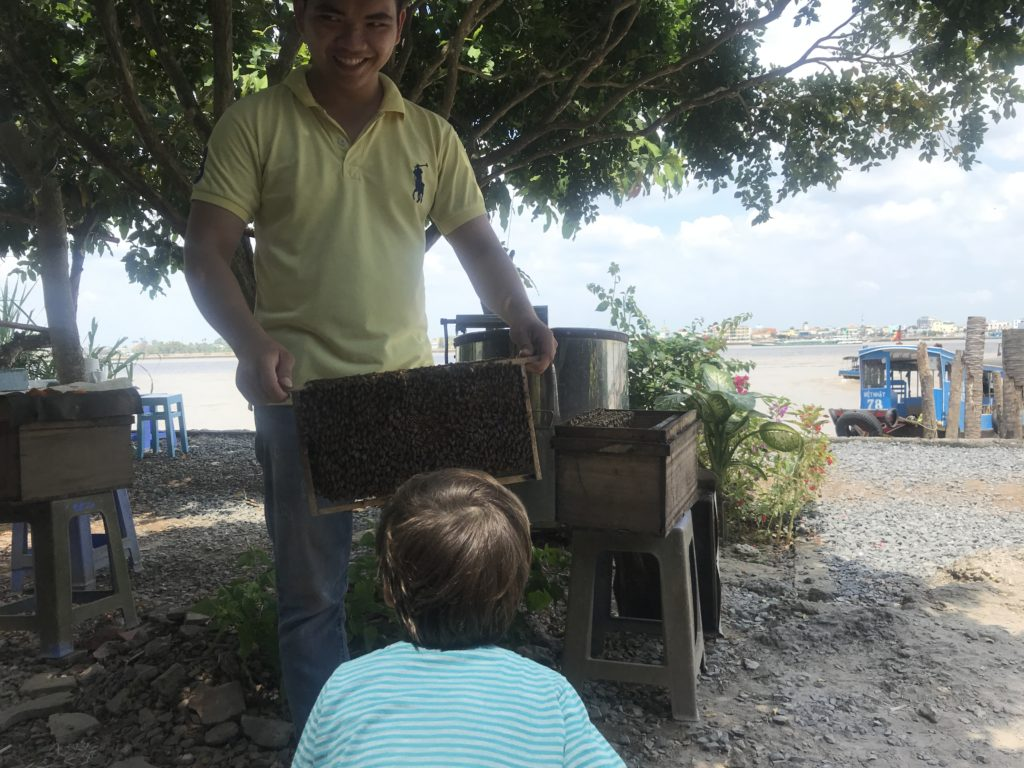 Small boy looking at man holding bee hive